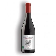 """Vin Merlot BIO """"terre sauvage"""" 2018 75cl"""